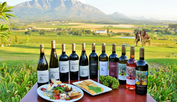 An Exclusive Wine Tasting Experience for up to 4 People at Val du Charron Wine & Leisure Estate!